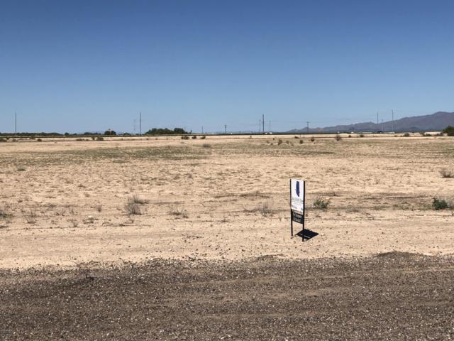 0 S Johnson Road, Buckeye, AZ 85326 (MLS #5834996) :: Yost Realty Group at RE/MAX Casa Grande