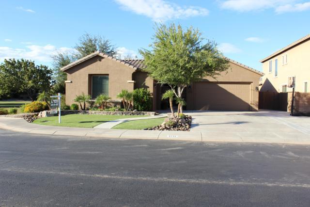 2772 E Lantana Drive, Chandler, AZ 85286 (MLS #5835011) :: Occasio Realty