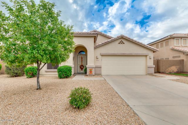 12625 W Catalina Drive, Avondale, AZ 85392 (MLS #5835012) :: Phoenix Property Group