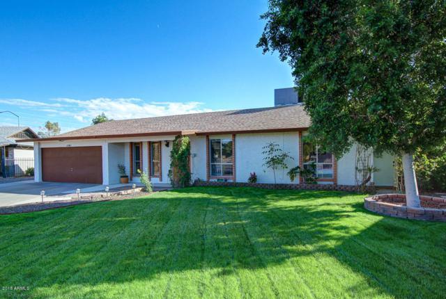 1141 E Glade Circle, Mesa, AZ 85204 (MLS #5835020) :: Yost Realty Group at RE/MAX Casa Grande