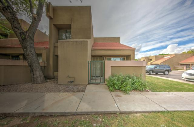 1432 W Emerald Avenue #705, Mesa, AZ 85202 (MLS #5835028) :: Yost Realty Group at RE/MAX Casa Grande