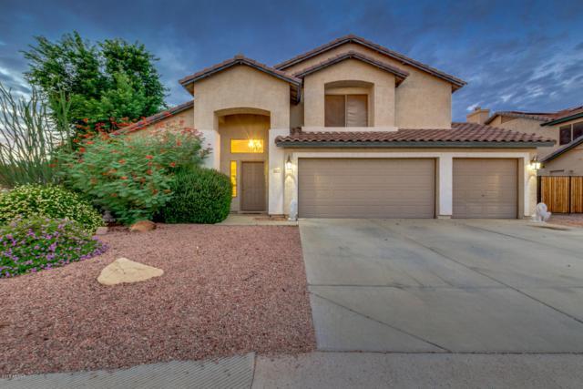 8672 W Rose Garden Lane, Peoria, AZ 85382 (MLS #5835050) :: Five Doors Network