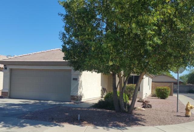 13117 N El Frio Street, El Mirage, AZ 85335 (MLS #5835073) :: Lux Home Group at  Keller Williams Realty Phoenix