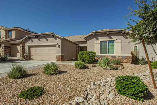 4490 W Maggie Drive, Queen Creek, AZ 85142 (MLS #5835132) :: Berkshire Hathaway Home Services Arizona Properties