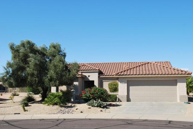 16022 W Silver Breeze Drive, Surprise, AZ 85374 (MLS #5835190) :: The Everest Team at My Home Group