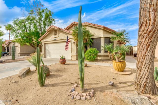 4430 E Amberwood Drive, Phoenix, AZ 85048 (MLS #5835218) :: CANAM Realty Group