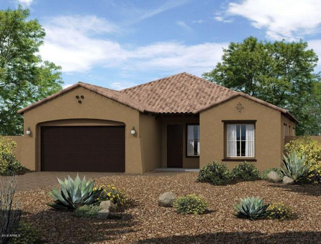 12927 N 143RD Drive, Surprise, AZ 85379 (MLS #5835221) :: The Sweet Group