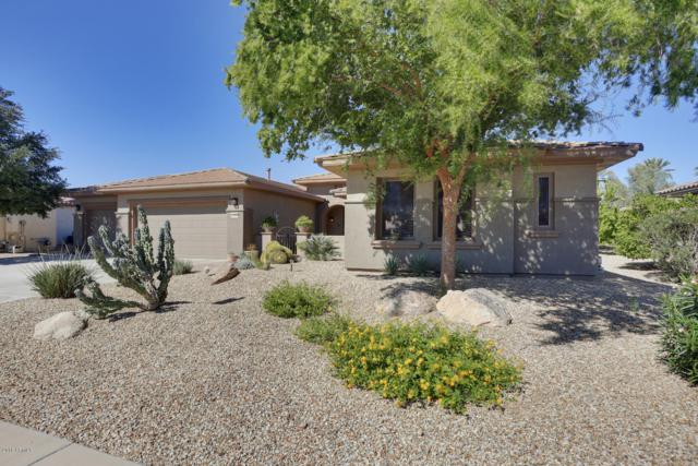20550 N Bear Canyon Court, Surprise, AZ 85387 (MLS #5835226) :: The Everest Team at My Home Group