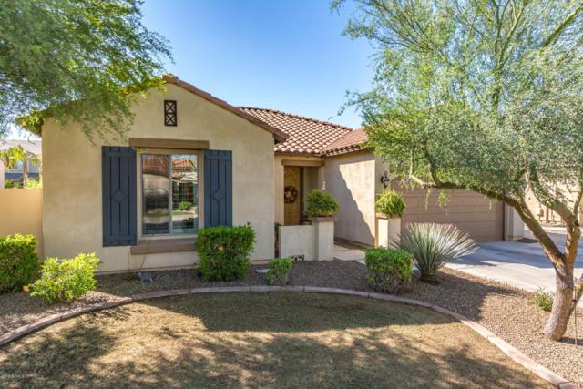 443 W Lantana Place, Chandler, AZ 85248 (MLS #5835229) :: Berkshire Hathaway Home Services Arizona Properties