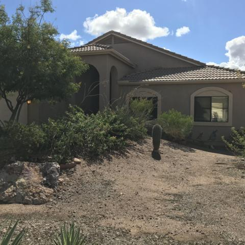 265 E 13TH Avenue, Apache Junction, AZ 85119 (MLS #5835233) :: Yost Realty Group at RE/MAX Casa Grande