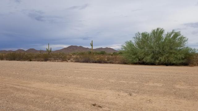 50350016B W 171st Ave/Dove Valley Road, Surprise, AZ 85387 (MLS #5835255) :: Five Doors Network
