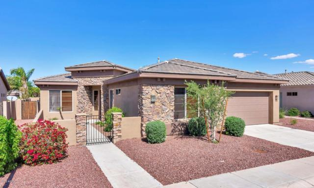 1920 E Latona Road, Phoenix, AZ 85042 (MLS #5835295) :: The Jesse Herfel Real Estate Group
