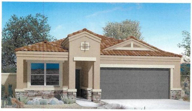 8507 S 256TH Lane, Buckeye, AZ 85326 (MLS #5835319) :: Phoenix Property Group