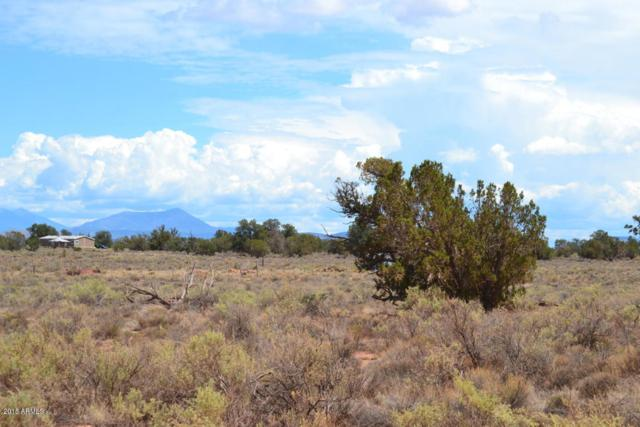 557 E Cimmaron Strip Road, Williams, AZ 86046 (MLS #5835367) :: Berkshire Hathaway Home Services Arizona Properties