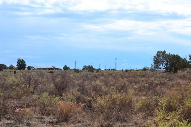556 E Highgrove Road, Williams, AZ 86046 (MLS #5835372) :: Berkshire Hathaway Home Services Arizona Properties