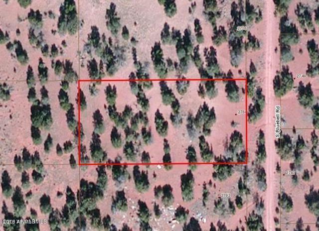 2764 S Bluebell Road, Williams, AZ 86046 (MLS #5835379) :: Berkshire Hathaway Home Services Arizona Properties