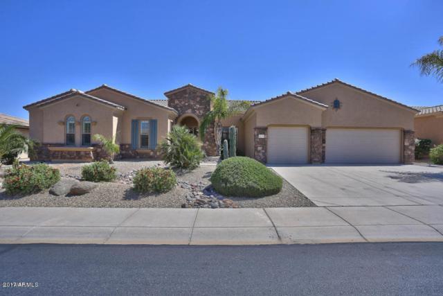 20175 N Sojourner Drive, Surprise, AZ 85387 (MLS #5835392) :: Phoenix Property Group