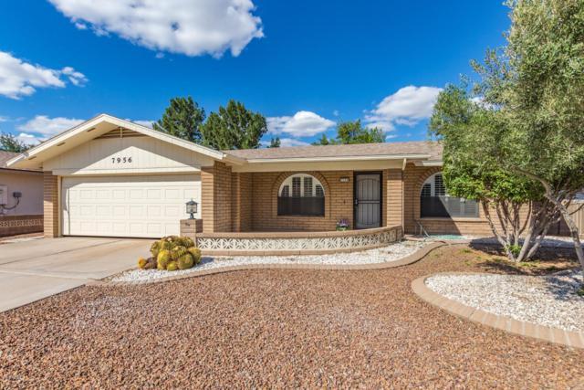 7956 E Lindner Circle, Mesa, AZ 85209 (MLS #5835393) :: Five Doors Network