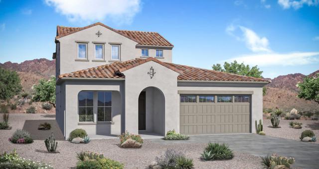 18407 W Mercer Lane, Surprise, AZ 85388 (MLS #5835407) :: Five Doors Network