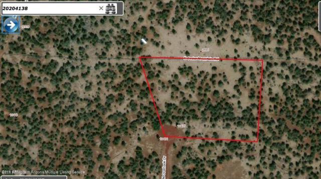 10425 N Overlook Drive, Williams, AZ 86046 (MLS #5835428) :: Yost Realty Group at RE/MAX Casa Grande