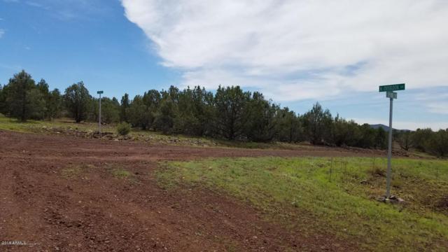 2664 E Overlook Drive, Williams, AZ 86046 (MLS #5835434) :: Yost Realty Group at RE/MAX Casa Grande