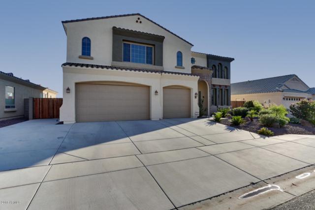 9587 W Deanna Drive, Peoria, AZ 85382 (MLS #5835446) :: Desert Home Premier