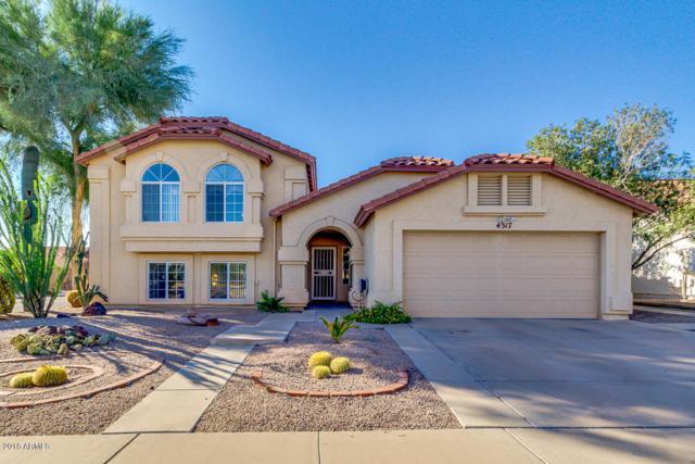 4517 E Hopi Street, Phoenix, AZ 85044 (MLS #5835460) :: Kepple Real Estate Group