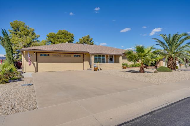 20020 N Willow Creek Circle, Sun City, AZ 85373 (MLS #5835467) :: Desert Home Premier