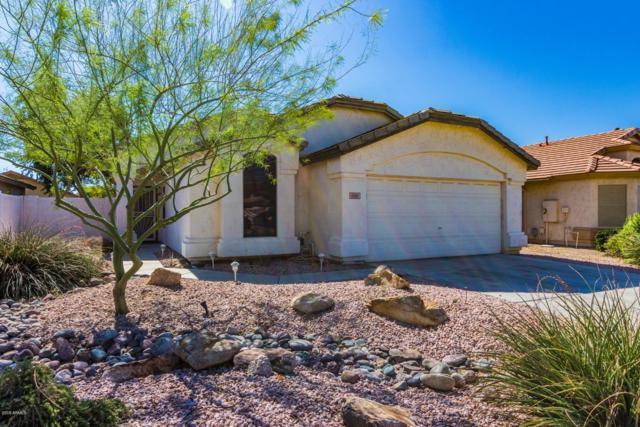 6361 W Wahalla Lane, Glendale, AZ 85308 (MLS #5835477) :: Desert Home Premier