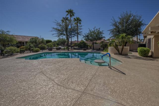 15797 W Merrell Street, Goodyear, AZ 85395 (MLS #5835480) :: The Sweet Group