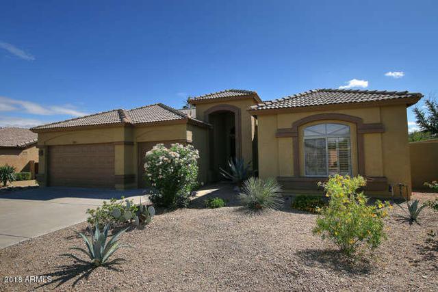 18151 W Santa Alberta Lane, Goodyear, AZ 85338 (MLS #5835482) :: The Sweet Group