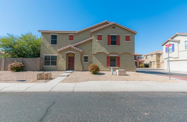 9502 N 82ND Lane, Peoria, AZ 85345 (MLS #5835487) :: Desert Home Premier