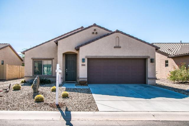 5085 W Tortoise Drive, Eloy, AZ 85131 (MLS #5835498) :: The Laughton Team