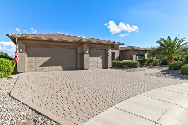 20563 N Bear Canyon Court, Surprise, AZ 85387 (MLS #5835516) :: Desert Home Premier