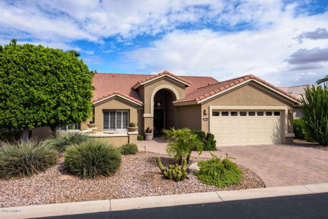 15796 W Verde Lane, Goodyear, AZ 85395 (MLS #5835518) :: Desert Home Premier