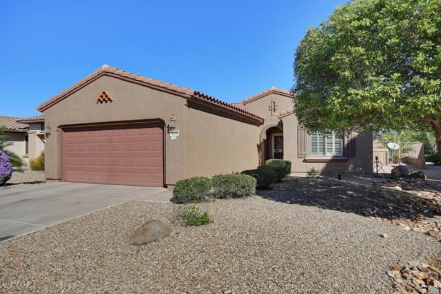 16348 W Salado Creek Drive, Surprise, AZ 85387 (MLS #5835530) :: Desert Home Premier