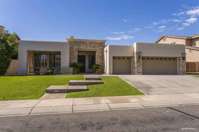 181 E Louis Way, Tempe, AZ 85284 (MLS #5835553) :: CANAM Realty Group