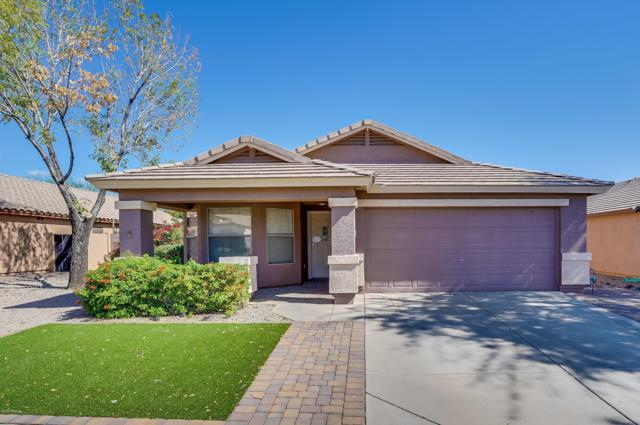 2851 S Coyote Canyon Circle, Mesa, AZ 85212 (MLS #5835559) :: The Everest Team at My Home Group