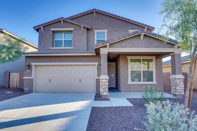 331 E Salerno Way, San Tan Valley, AZ 85140 (MLS #5835561) :: Gilbert Arizona Realty