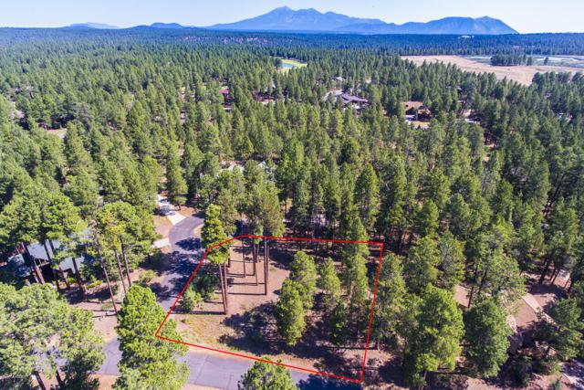 2605 Joe Dolan, Flagstaff, AZ 86005 (MLS #5835612) :: Gilbert Arizona Realty