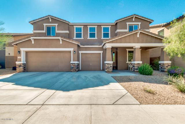 7907 W Molly Drive, Peoria, AZ 85383 (MLS #5835616) :: Lifestyle Partners Team