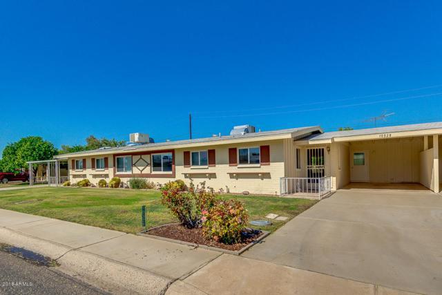 10328 W Clair Drive, Sun City, AZ 85351 (MLS #5835621) :: Desert Home Premier