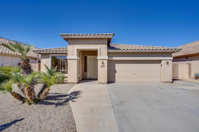 3414 N 126TH Drive, Avondale, AZ 85392 (MLS #5835643) :: Team Wilson Real Estate