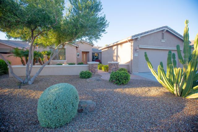 42598 W Kingfisher Drive, Maricopa, AZ 85138 (MLS #5835670) :: Gilbert Arizona Realty