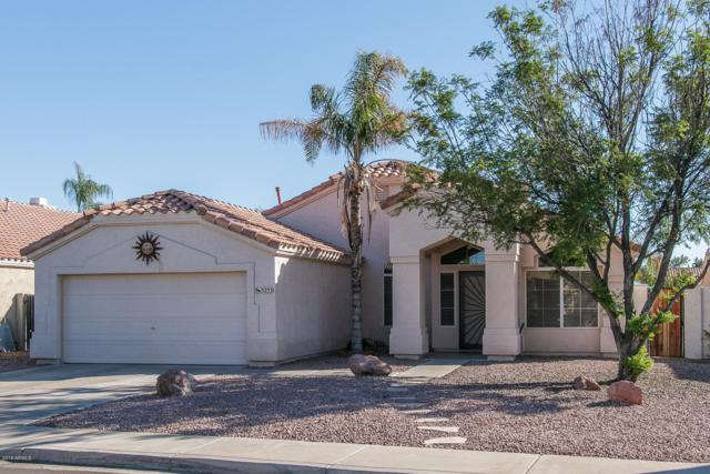 5233 W Taro Lane, Glendale, AZ 85308 (MLS #5835671) :: The Luna Team