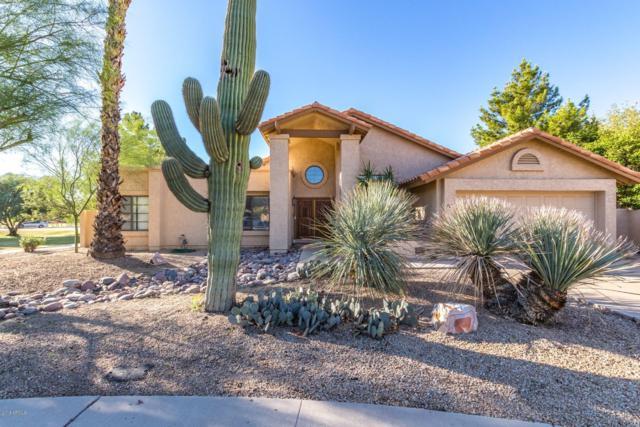 123 W Myrna Lane, Tempe, AZ 85284 (MLS #5835673) :: Kelly Cook Real Estate Group