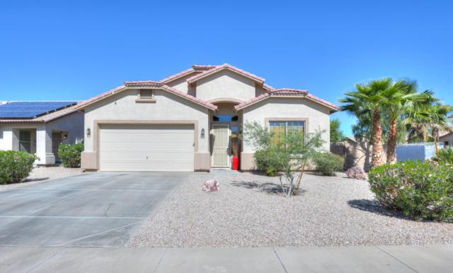43174 W Chisholm Drive, Maricopa, AZ 85138 (MLS #5835704) :: CANAM Realty Group