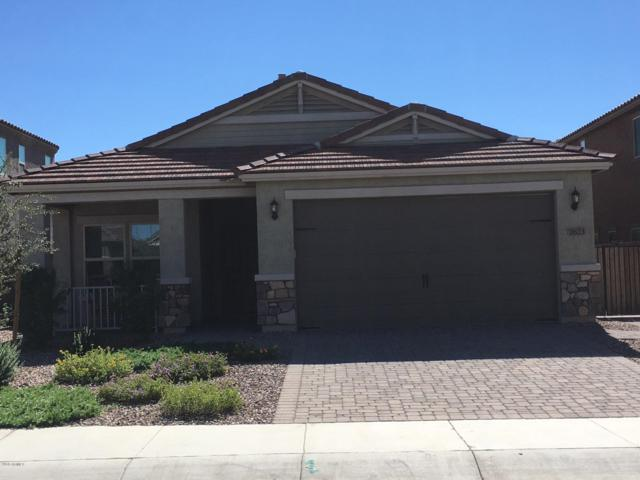 2623 E Mews Road, Gilbert, AZ 85298 (MLS #5835713) :: CANAM Realty Group