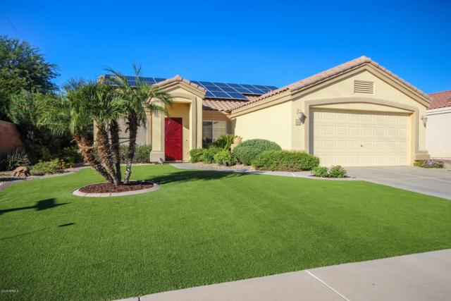 11194 W Ashley Chantil Drive, Surprise, AZ 85378 (MLS #5835721) :: Desert Home Premier