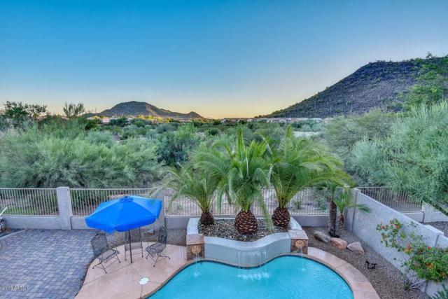2115 E Electra Lane, Phoenix, AZ 85024 (MLS #5835737) :: Kelly Cook Real Estate Group